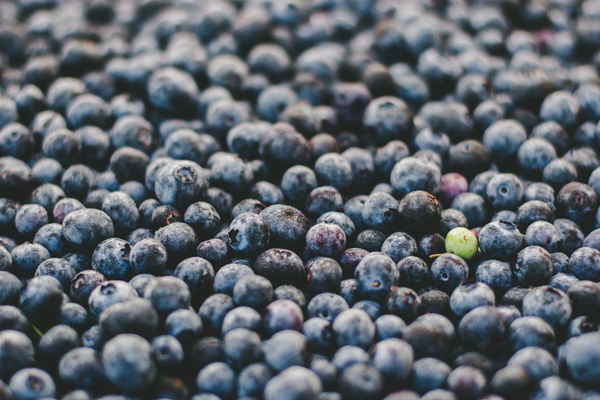 Ett grönt blåbär bland blå blåbär, för att visa på omprofilering